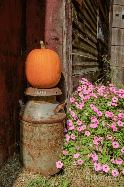 Wall Art - Photograph - Pumpkin On An Old Milk Can by Edward Fielding
