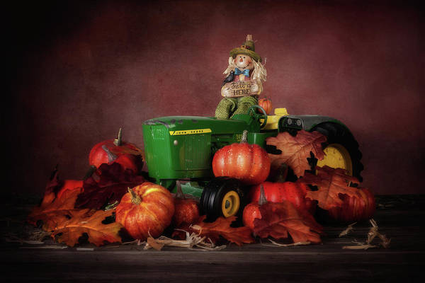 Seasonal Photograph - Pumpkin Patch Whimsy by Tom Mc Nemar