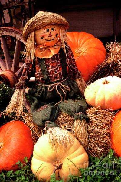 Photograph - Pumpkin Salesman  by Paul W Faust - Impressions of Light