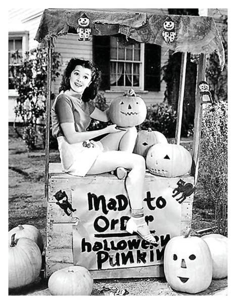 Wall Art - Photograph - Pumpkin Shop by Long Shot