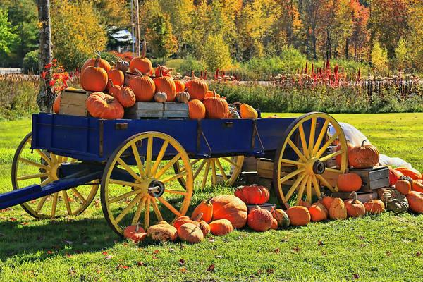 Waterbury Photograph - Pumpkin Still Life by Allen Beatty