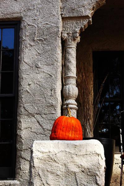 Photograph - Pumpkin Time In Maple Ridge by Susan Vineyard