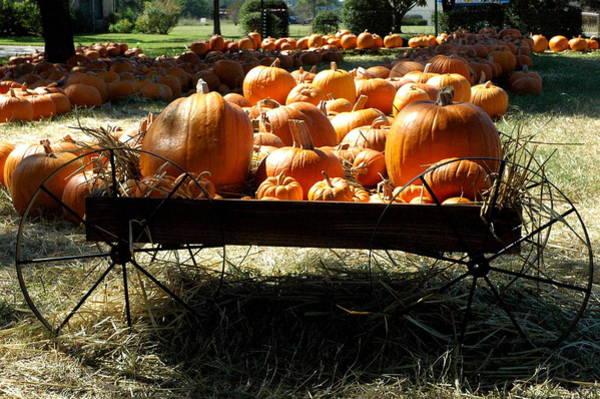 Photograph - Pumpkin Wagon by Teresa Blanton