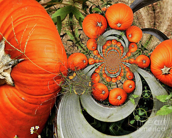 Photograph - Pumpkins Abstract by Smilin Eyes  Treasures