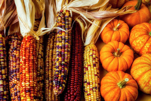 Indian Corn Photograph - Pumpkins And Indian Corn by Garry Gay