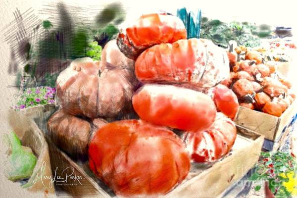 Digital Art - Pumpkins And  More Pumpkins by MaryLee Parker