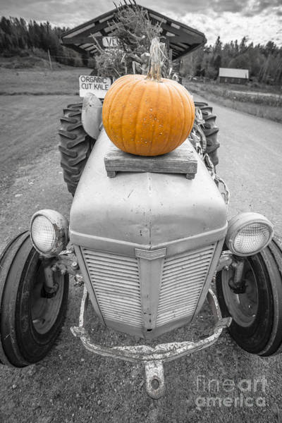 Road Side Photograph - Pumpkins For Sale Vermont by Edward Fielding