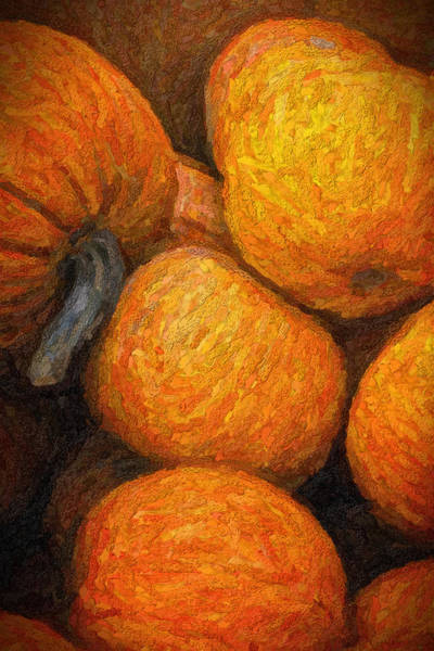 Photograph - Pumpkins In A Box by Tom Singleton