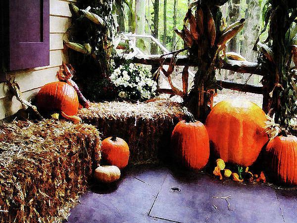 Photograph - Pumpkins On Porch by Susan Savad