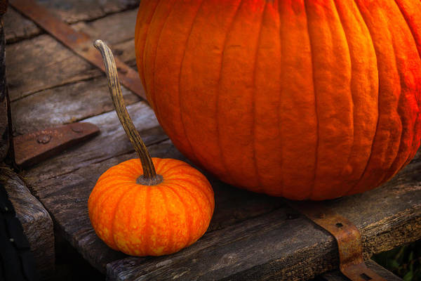 Edible Photograph - Pumpkins Sitting On Wooden Wagon by Garry Gay