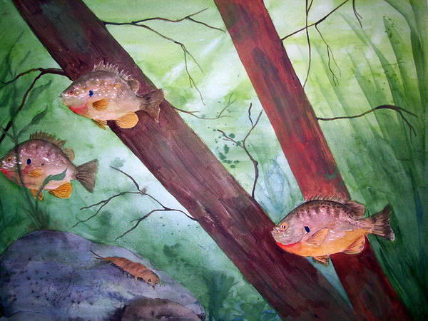Painting - Pumpkinseed Sunfish by Audrey Bunchkowski