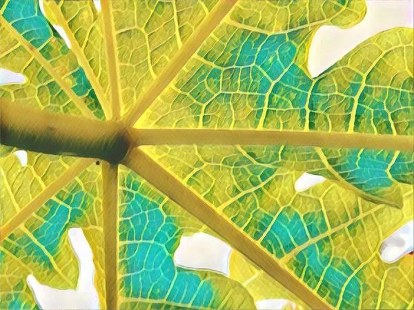 Puna Papaya Leaf Art Print