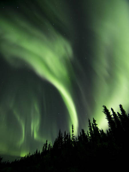 Photograph - Punctuated Aurora by Ian Johnson