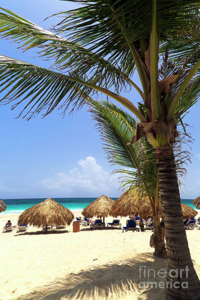 Photograph - Punta Cana View by John Rizzuto