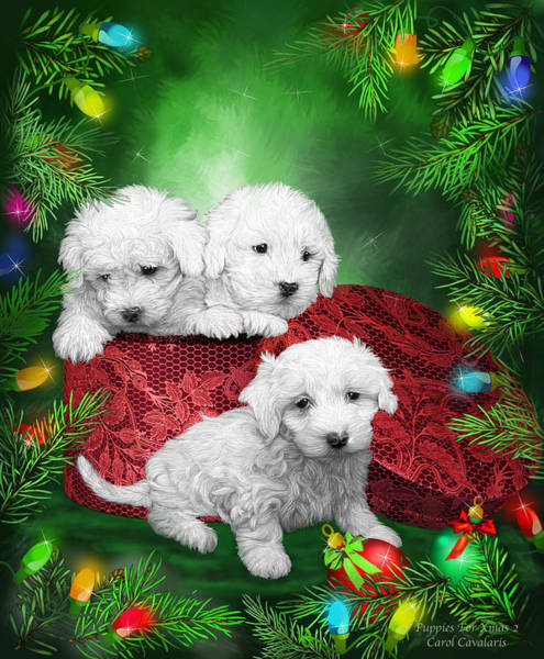 Mixed Media - Puppies For Christmas by Carol Cavalaris