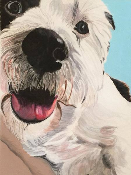Painting - Puppy Face by Sonja Jones