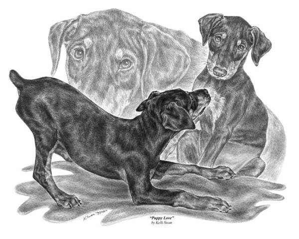 Drawing - Puppy Love - Doberman Pinscher Pup by Kelli Swan