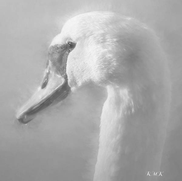 Painting - Purity Bw by Rose-Maries Pictures