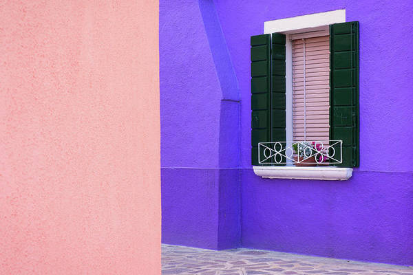 Photograph - Purple And Peach by Michael Blanchette