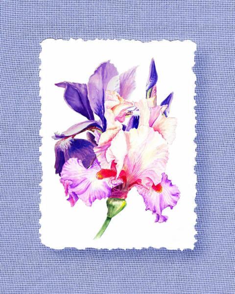 Painting - Purple And Pink Iris Flowers by Irina Sztukowski