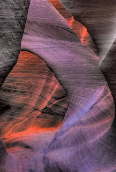 Photograph - Purple Arch by David Andersen