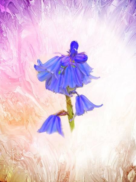 Digital Art - Purple Bluebells by Rusty R Smith