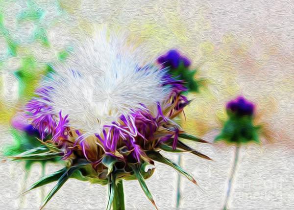 Purple Chaparral  Art Print