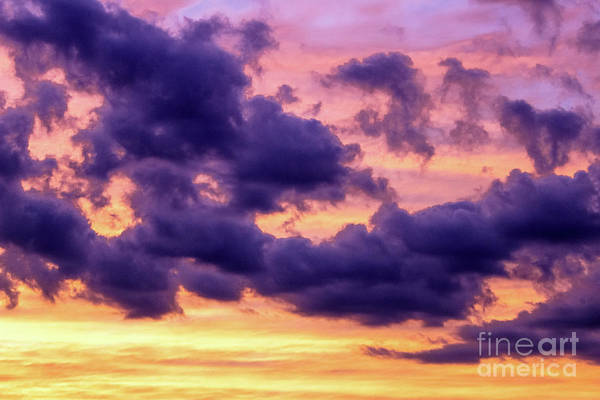 Wall Art - Photograph - Purple Clouds by Colleen Kammerer