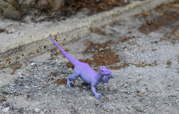 Photograph - Purple Dinosaur - Sharon Cummings by Sharon Cummings