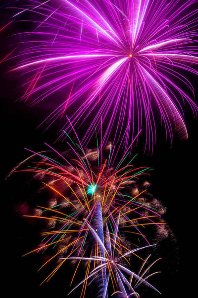 Dazzle Wall Art - Photograph - Purple Fireworks by Garry Gay
