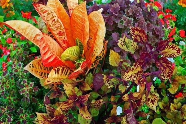 Pea Digital Art - Purple Flowers by Michael Thomas
