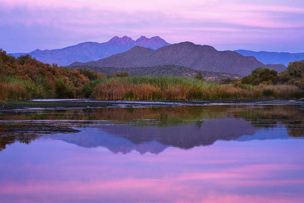 Wall Art - Photograph - Purple Four Peaks Reflections by Dave Dilli