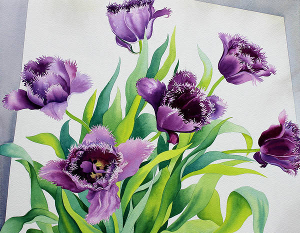 Violet Painting - Purple Fringe Tulips by Christopher Ryland