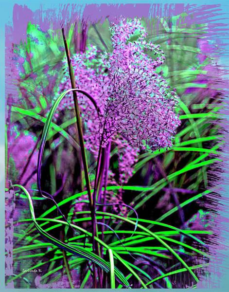 Photograph - Purple Grasses by Gerlinde Keating - Galleria GK Keating Associates Inc