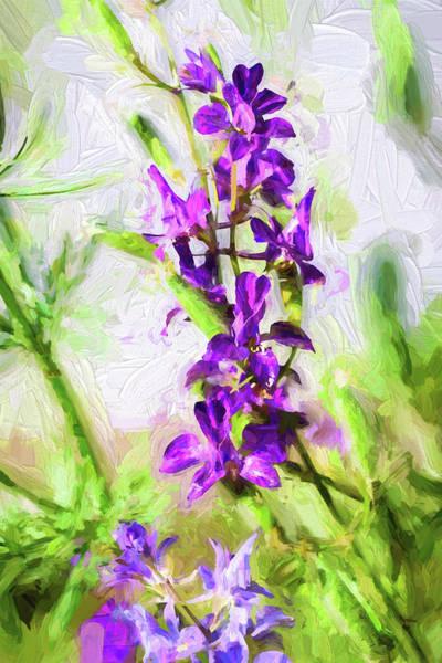 Photograph - Purple Haze by John Williams