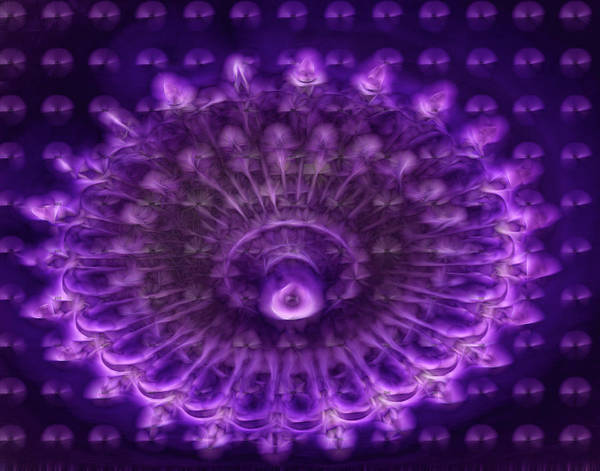 Wall Art - Photograph - Purple Haze by Winnie Chrzanowski