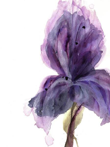 Painting - Purple Iris by Dawn Derman