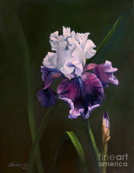 Jeanne Newton Schoborg Wall Art - Painting - Purple Iris by Jeanne Newton Schoborg