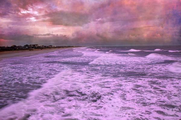 Nc Wall Art - Photograph - Purple Majesty  by Betsy Knapp