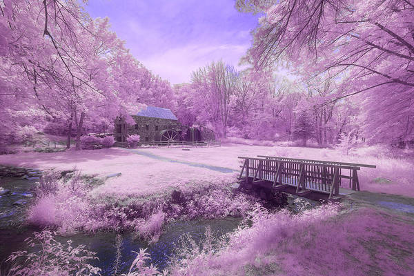 Photograph - Purple Mill by Brian Hale