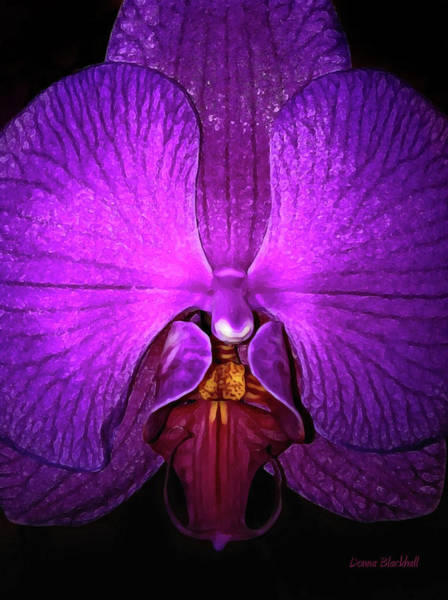 Donna Digital Art - Purple Orchid by Donna Blackhall