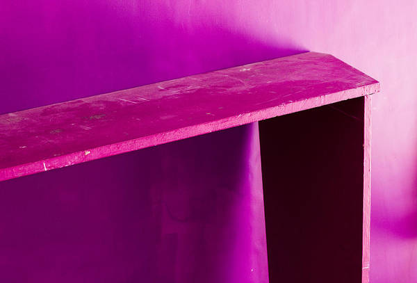 Wall Art - Photograph - Purple Passion by Prakash Ghai