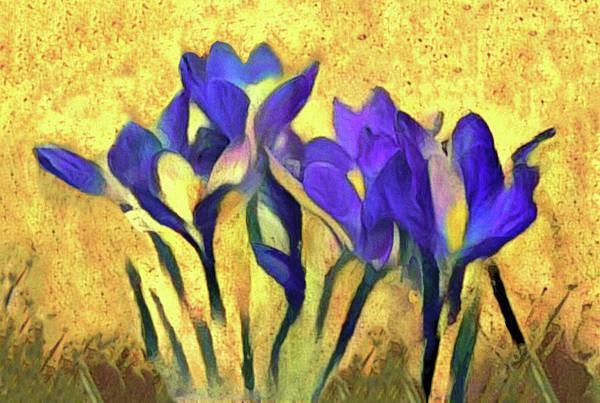 Mixed Media - Purple Spring Crocus Flowers by Susan Maxwell Schmidt