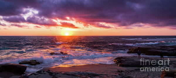 Photograph - Purple Sunset At Windansea Beach by David Levin