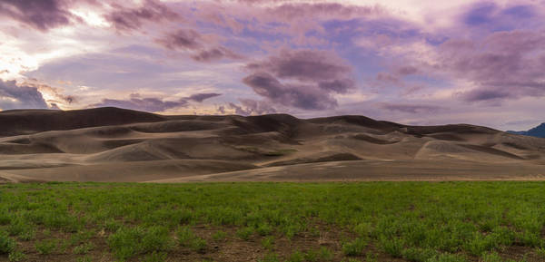 Photograph - Purple Sunset Over The Dunes by Brian  Weiss
