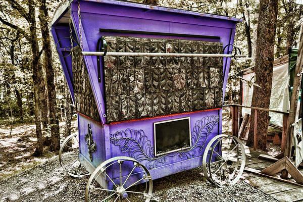 Photograph - Purple Traveler by Sharon Popek