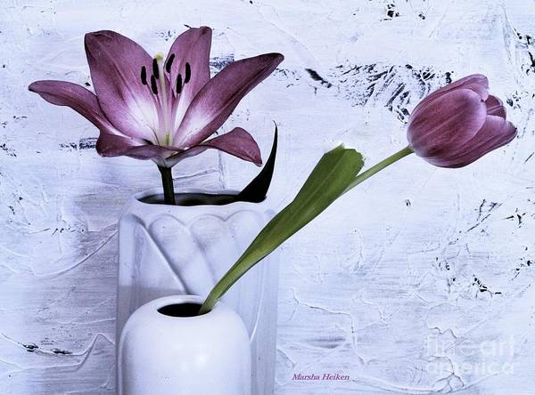 Wall Art - Photograph - Purple Tulip And Lily by Marsha Heiken