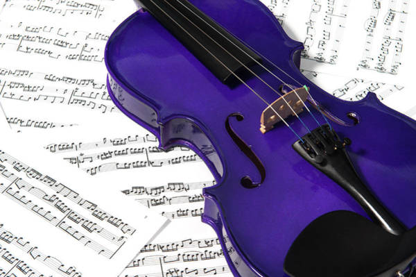 Photograph - Purple Violin And Music II by Helen Northcott