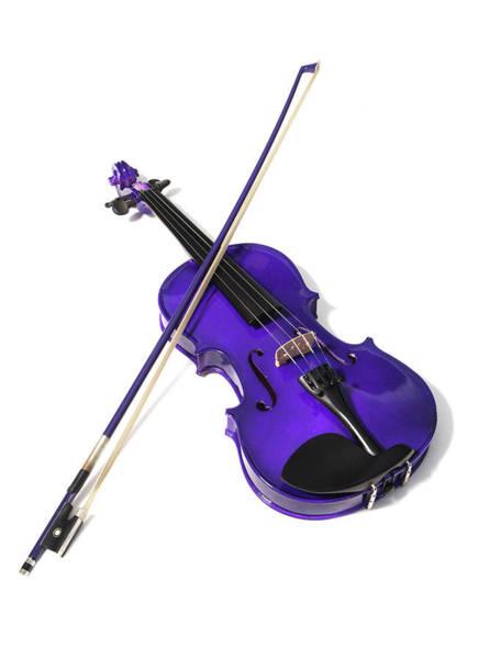 Photograph - Purple Violin by Helen Northcott