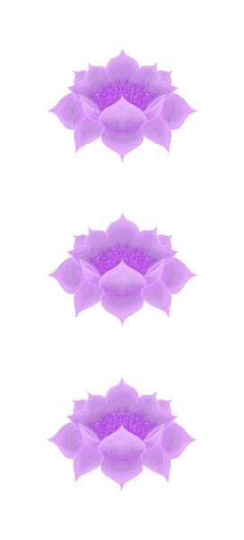 Digital Art - Purple Lotus Pattern by Elizabeth Lock